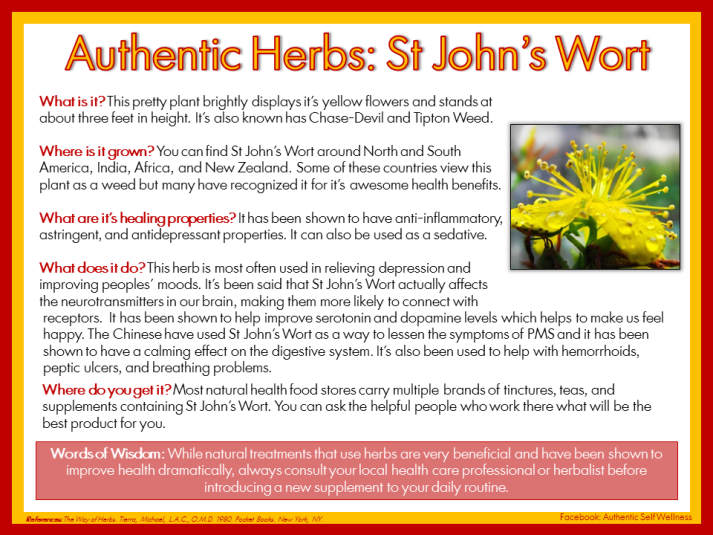 Authentic Herbs St Johns Wort