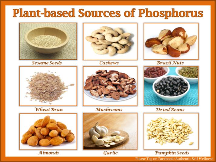 Plant based sources of phosphorus
